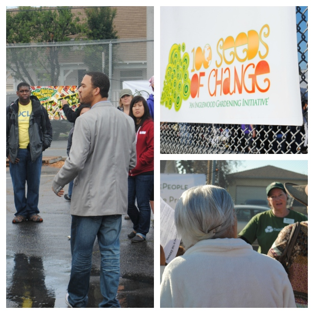 2013 Fruit Tree Distribution Collage 1 - F2P Culinary Club
