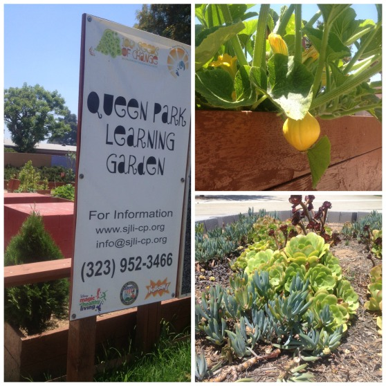 Queen Park Learning Garden Collage - F2P Culinary Club